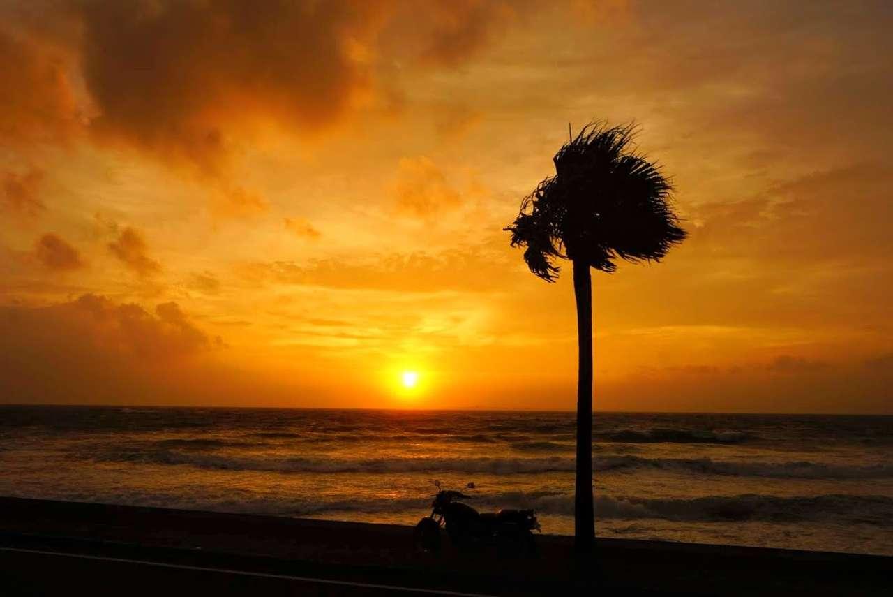 種子島の絶景夕陽とあつあつ焼きカレーを堪能しました。